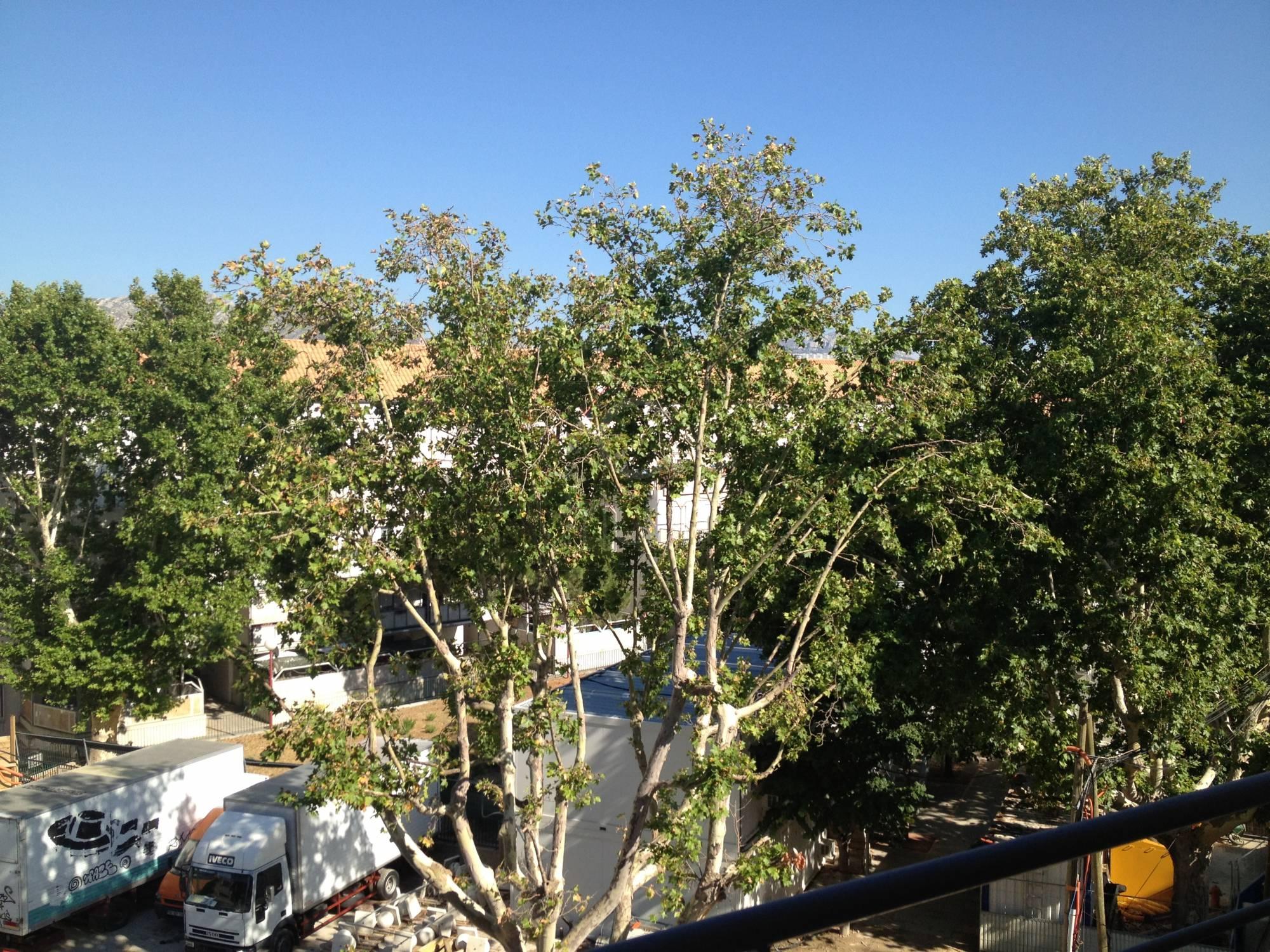 Location appartement maison villa Marseille (13000) - MyMarseille