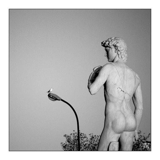 Agence immobiliere Marseille -  Statue de David Marseille